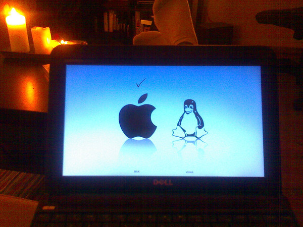fabienne us » Blog Archive » installing dual boot os x and ubuntu on