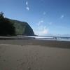 the beach at the bottom of the waipio valley