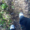 running the johnstone trail